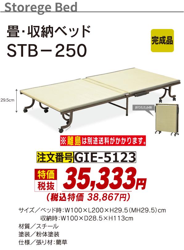 5123_畳収納ベッド_STB-250